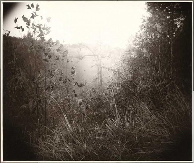 Sally Mann, America: Now + Here 2009 Photography Portfolio: Untitled 1995, Digital C-Print